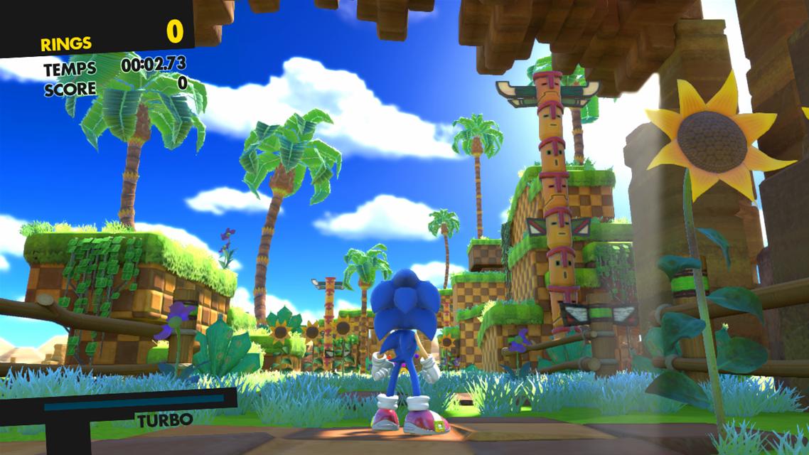 Sonic admire le panorama, pour une fois il prend le temps